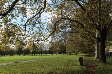 Green Spaces On Your Doorstep In Balham Village